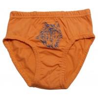 Трусы для мальчика Valeri-tex 0020-55-126-011-1 Оранжевый