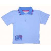 Джемпер для мальчиков Valeri-tex 1585-75-130 Голубой